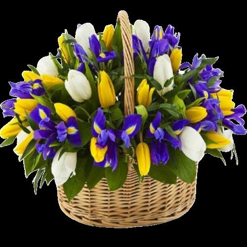 Цветы в корзине весна ирисы тюльпаны